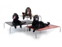 Bunk Dog Beds