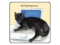Cat - Coasters