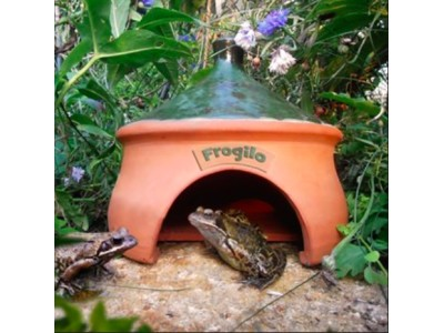 Frog & Toad House