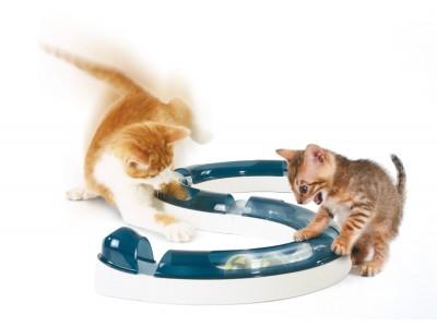 Catit - Senses Play Circuit - Cat Toy